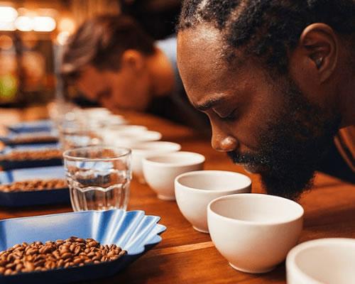 African coffee bureau promotion and niche market scheme
