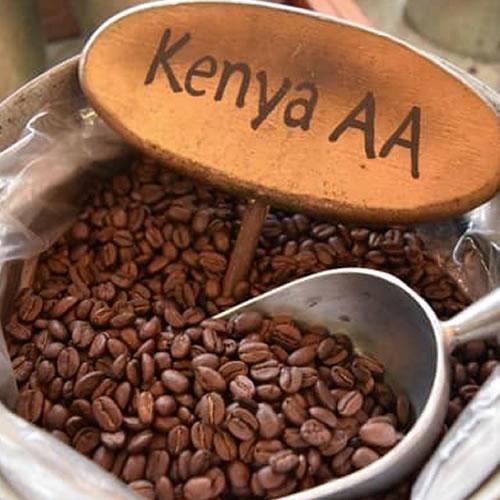Africa coffee bureau